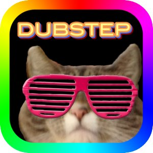 dubstep kitty